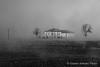 Le case del silenzio #Esplora# (Gianni Armano) Tags: case del silenzio nebbia campagna alessandria piemonte italia marzo 2018 foto gianni armano photo flickr