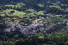 Furnas (Elios.k) Tags: horizontal outdoors nopeople green hills plain trees view landscape sunlight weather mountain forest miradouropicodoferro panoramicview vistapoint miradouro valley village houses colour color travel travelling june2017 summer vacation canon 5dmkii photography island furnas povoação povoacaomunicipality saomiguel sãomiguel acores azores portugal europe grass