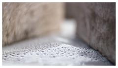 Bubblelicious _ 2 (leo.roos) Tags: condensation condens waterdrops druppels plastic projectionlens projectorlens hugomeyerkinoniiisuperiorf65cm a7rii darosa leoroos swirly dayprime day65 dayprime2018 dyxum challenge prime primes lenzen brandpuntsafstand focallength fl xif