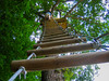 Ladder Climber in the Woods (Andy Sut) Tags: ladder climb girl ropeladder height france