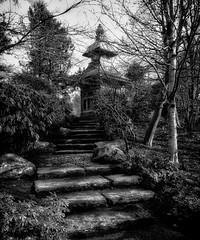 Path to the Pagoda (Bill Eiffert) Tags: pagoda architecture park public civic steps trees blackandwhite nature