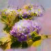 Happy Friday (BirgittaSjostedt) Tags: flower texture paint nature single closeup garden coth5