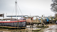 Home is where the heart is...-5106 (Patrick Ladbrooke) Tags: pinmill chelmondiston barges orwell suffolk