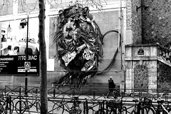 Under the rat (pascalcolin1) Tags: paris13 homme man rat mur wall photoderue streetview urbanarte noiretblanc blackandwhite photopascalcolin 50mm canon50mm canon