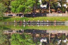 (8+) (ricardocarmonafdez) Tags: sevilla rio guadalquivir river urbanscene triana remo rowing row sport agua water reflejos reflections 60d 1785isusm canon