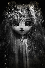Sleeping Forest (Chantepierre) Tags: pullip fc fullcusto full custo custom goth gothic dark forest chantepierre ladicius