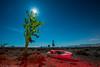 Red Tide (dejavue.us) Tags: lightpainting california d850 nightphotography nikon desert joshuatree vle moonrise fullmoon boat mojavedesert longexposure 180350mmf3545 nikkor