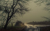 In an uncertain Future (Netsrak) Tags: baum bäume eu europa europe forst januar january landschaft natur nebel wald fog forest landscape mist nature tree trees winter woods rheinbach nordrheinwestfalen deutschland de