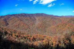 IMG_3762_Smoky Mountains (Alex Hsieh (椰子人)) Tags: ç´è² smokymountains smokymountainsnationalpark nationalpark 2016 fall fallfoliage autumn roadtrip travel tennessee northcarolina tn usa canon canon6d 6d