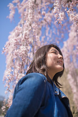 High-teen girl enjoy hanami under blue sky (Apricot Cafe) Tags: img29866 asia asianandindianethnicities japan japaneseethnicity kyotocity kyotoprefecture sigma35mmf14dghsmart blue casualclothing charming cheerful cherryblossomshanami citylife day enjoyment freedom happiness kyotogyoen lifestyles oneperson onlywomen outdoors photography pink publicpark relaxation sideview sky smiling springtime teenager waistup walking weekendactivities women youngadult