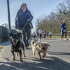 Ronnie + Reggie (Bob the Binman) Tags: thorpe halfmarathon jogging running race surrey thorpepark egham virginiawater lyne nikon d7100 street dogs