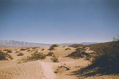 Death Valley Dunes (H o l l y.) Tags: lomography pentax analog 35mm film death valley landscape nature desert sand dunes sky heat california retro indie vintage