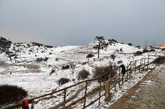 Natures playground (Its a grainy world) Tags: sandakphuphalut sabargram snow phalut sandakphu singallila snowfalls thunderstorm meghma singalila kalapokhri tonglu tumling gauribas dhotrey