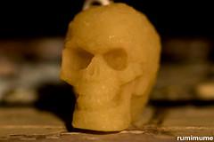 Bees(wax) Skull (rumimume) Tags: potd rumimume 2017 niagara ontario canada photo canon 80d sigma beeswax candle skullindoor wax wick shadow light diffuser 2018