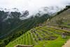 Culture en terrasse / Machu Picchu / Pérou (moltes91) Tags: culture en terrasse machu picchu pérou peru cusco cuzco travel voyage landscape clouds mountains architecture nikon d7200 nikkor 20mm f28 terrace wild nature
