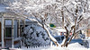 The neighborhood is covered under 15 inch of snow from Winter Storm Skylar (kuntheaprum) Tags: winterstorm skylar blizzard 15footersnow nikon d5300 tamron samyang f14 85mm