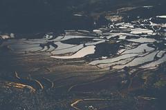_62A0844 (gaujourfrancoise) Tags: china chine gaujour yunnan rizièresenplateau paddyfields yuanyang haniethnicgroup