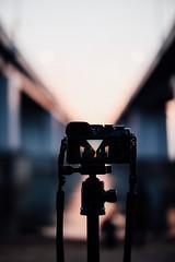 (t*tomorrow) Tags: canon eos 5d2 50mm gx8 琵琶湖 滋賀