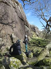 idillic crag (squeezemonkey) Tags: northwales snowdonia winter castlestafftrip tremadog tradclimbing climbing outdoors climbers doleriterock craigpantifan uppertier crag belaying trees shadows sunlight