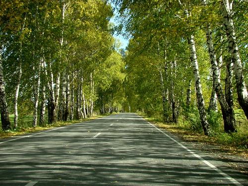 Дорога на Зюраткуль ©  ayampolsky