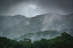 Mists of Bonampak (DSC6365) (DJOBurton) Tags: mist jungle chiapas bonampak mexico