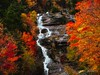 Scenic Beauty (Gans 10) Tags: yellow green red brown leafs scenic colorful autumn fall newhampshire