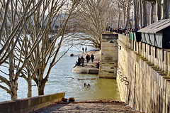 372 Paris en Février 2018 - Quai du Louvre (paspog) Tags: paris france seine crue inondation flodd rivière river fluss fleuve février februar february 2018 quaidulouvre quai kay