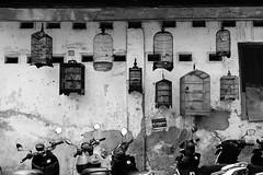 Bird Cages (Henry Sudarman) Tags: birdcage cage parking sony a6500 sonya6500 jakarta pasarbaru indonesia blackandwhite bw hitamputih