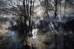 (Malykhanov) Tags: rays river mist morning ray sun winter cold fog snow water woods wood light landscape nature forest trip travel trees tree psychedelic surreal white