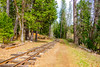 DSCF5021.jpg (RHMImages) Tags: xt2 cabins traintracks trailers tents inntowncampground railroad nevadacounty fuji camping campground sign nevadacity fujifilm glamping