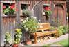 summer day in Black Forest (yorkiemimi) Tags: germany deutschland schwarzwald bench bank house haus flowers blumen