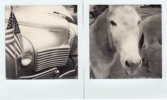 chrysler and burro (EllenJo) Tags: chilicookoff clarkdaleclassiccarshow carshow 89a mainstreet 86324 clarkdalearizona az automobiles cars vintagecars march2018 donkey burro clarkdaleburro polaroidsx70 polaroidoriginals theimpossibleproject instantfilm chrysler car classic americanflag diptych ellenjo smalltownlife lifeoutwest 1930schrysler grill bw