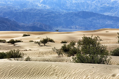 Mesquite Sand Dunes (erichudson78) Tags: usa california deathvalleynationalpark mesquitesanddunes canoneos6d canonef70200mmf4lisusm paysage landscape sable sand montagne mountain outside nature southwest 7dwf