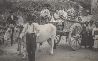Ascoli com'era: Ferragosto, alla festa con un traino di buoi (1923)