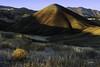 Sunrise at Painted Hills (TierraCosmos) Tags: sunrise paintedhills mitchell centraloregon oregon hill bush landscape