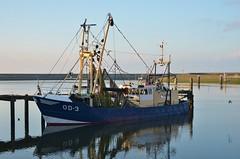 OD-3 Adrianne (Hugo Sluimer) Tags: portofrotterdam port hav onzehaven nlrtm nederland zuidholland holland