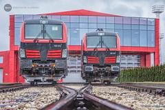 [BLACK] DMV Cargo Rail: 193 972 & 192 961 (BackOnTrack Studios) Tags: dmv vectron cargo rail siemens electric locomotive ruse bulgarian railways 192 961 193 972 fighter