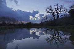 Evening Decay (Deepgreen2009) Tags: reflection clouds cumulus decaying evening dusk oak calm pond mirror smooth