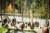 Ringing the Bells (janos radler) Tags: klangwäg klangweg bells sound music switzerland toggenburg altstjohann