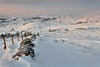 Alpenglow (Andrew Mowbray) Tags: chromehill parkhousehill earlsterndale earlymorning snow upperdove peakdistrict peakdistrictnationalpark walkinginderbyshire derbyshire whitepeak winter alpenglow