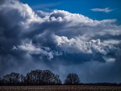 AlliStructure (PeZ_III) Tags: bostedor dbozphotography nature naturephotography natureporn artisticnature landscape landscapephotography jackson jacksonmichigan jxn jxnart jxnmi getolympus clouds cloudstructure michigan puremichigan puremittigan itsamazingoutthere weather blueskies