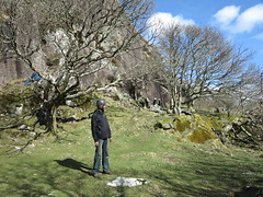 sunny weather at tremadog (squeezemonkey) Tags: northwales snowdonia winter castlestafftrip tremadog tradclimbing climbing outdoors climbers craigpantifan uppertier crag sunlight landscape trees shadows