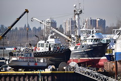 Fireboat and tug boats (D70) Tags: dry dock mitchell island vancouver bc canada seaimpix vikingpride fireboat tug boats vessels nikon d750 150600mm f563 ƒ71 4397mm 13200 800 sigma 150 600mm f5 63 dg os hsm contemporary