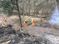 The gang load the fire on the embankment slope 22Mar18