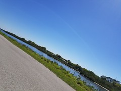 Florida Winter 2018 (Michel Curi) Tags: fl florida winter lovefl