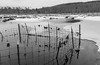 Flooded Fence (John Kocijanski) Tags: fence lake pond water reflections blackandwhite landscape sullivancounty canong15 ice snow winter hff