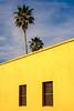 Colors of Baja (Alex E. Wells) Tags: baja bajacalifornia mexico yellow blue yellowandblur palms