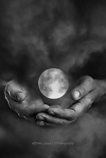 i'll give you the moon (week 9 hands - collective 52 photo project)