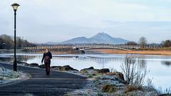 Frosty morning stroll (mickreynolds) Tags: lough lannagh castlebar love frosty wildatlanticway croaghpatrick lake street light reeds nx500