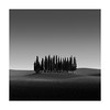 __|||||||||||__ (Nick green2012) Tags: trees tuscany minimal silence square illume landscape